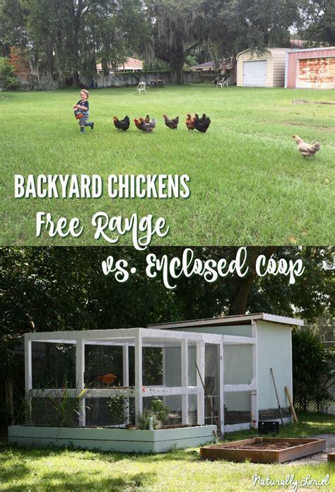 Backyard Poultry Naturally by Naturally Loriel Backyard Chickens Free Range Vs