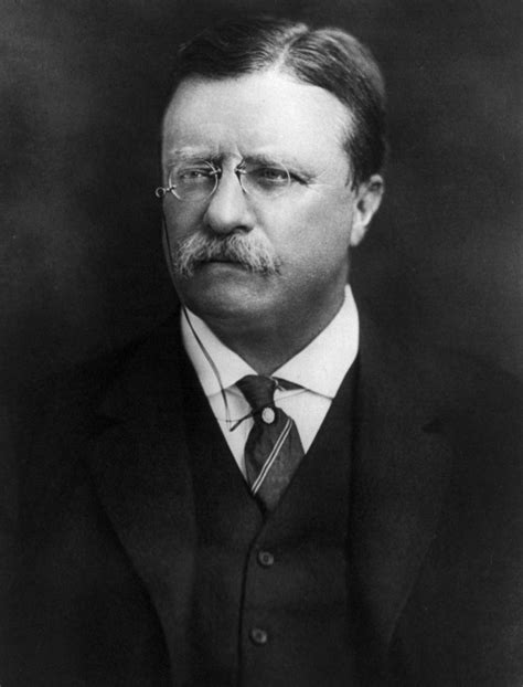 biography theodore roosevelt theodore roosevelt the president biography facts and quotes