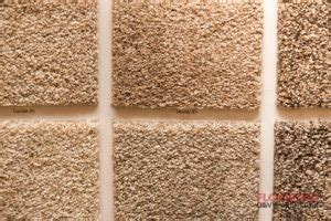 rugs arlington tx frieze carpet in arlington tx and installation of frieze carpeting