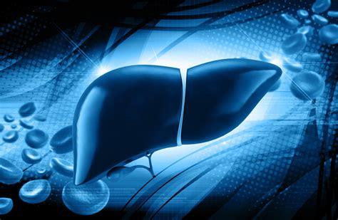 alimentazione per steatosi epatica la steatosi epatica quando il fegato 232 grasso inpharma