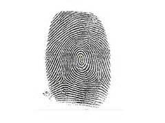 a fingerprint pattern quizlet fingerprint patterns flashcards quizlet