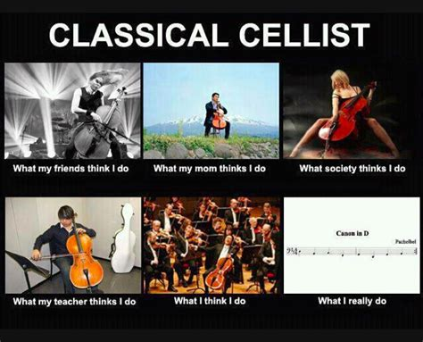 Cello Memes - cello meme www imgkid com the image kid has it