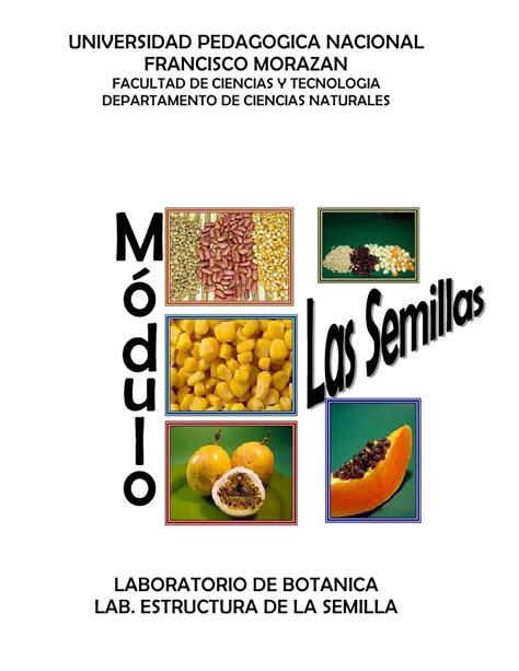 plantando semillas la practica practica sobre la estructura de la semilla