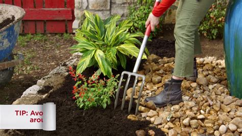how to mulch a flower bed 10 how to mulch a flower bed youtube