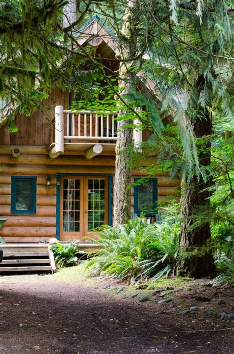 Detox Cabins by Digital Detox At Mount Baker Ifoodreal Healthy Family