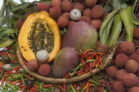 l fruits fruits et l 233 gumes ile de la r 233 union tourisme