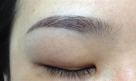 tattoo singapore cheap cheap and good eyebrow embroidery in singapore