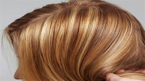 Types Of Hair Color by Professional Hair Care Advice For You To Be Stylish Vkool
