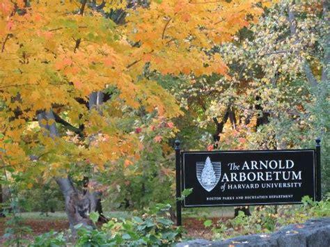 Landscape Arboretum Membership Arnold Arboretum Landscape Institute 28 Images Arnold