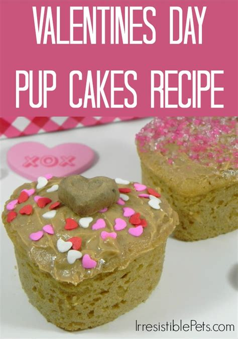 valentines day cakes recipes diy valentine s day pup cakes irresistible pets