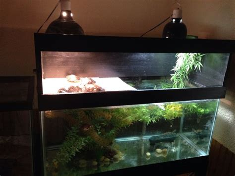 turtle tank topper diy turtle tank topper nothing but