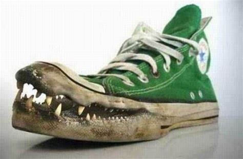 imagenes graciosas zapatos imagenes graciosas y raras taringa