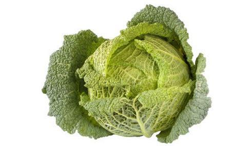 alimentos que contengan vitamina k alimentos ricos en vitamina k buena salud
