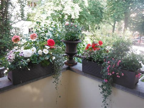 Pflanzen Als Sichtschutz Terrasse 880 by Der Balkon Und Der Garten Ihr Ort Der Erholung