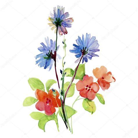 immagini fiori stilizzati acquerello di fiori stilizzati foto stock 169 olies 91943570