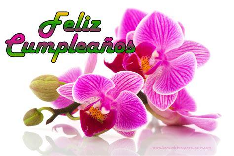 imagenes flores de cumpleaños banco de im 225 genes para ver disfrutar y compartir