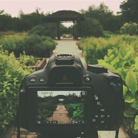 Kamera Dslr Canon Eos Rebel T4i free photo canon rebel t4i dslr garden path free