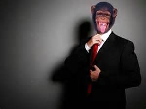 in suite suit monkey part 2 tales of the china white monkey