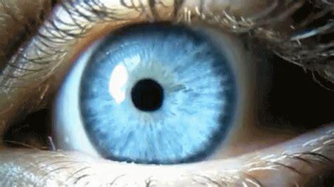 blueeye eye gif blueeye eye blink gifs say more with tenor