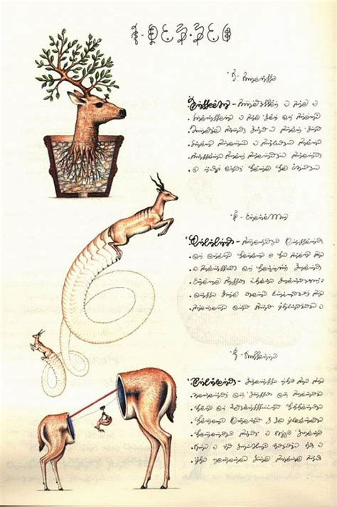 codex seraphinianus codex seraphinianus more pages dimka daily 2007 10 04