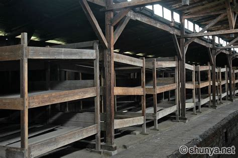 Concentration C Bunk Beds An Interactive Image Thinglink