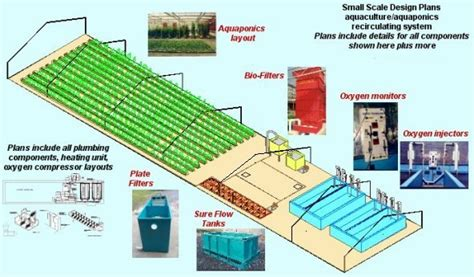 aquaponics business plan templates step by step aquaponics plans quotes