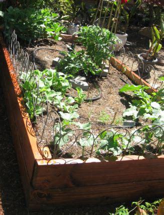 Vegetable Garden Soil Composition Landscape Design News