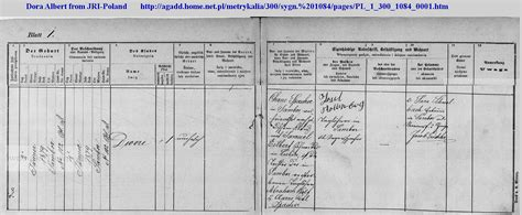 Austrian Birth Records Albert Vitals Immigration Records
