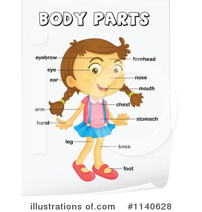 human body parts clipart clipart suggest