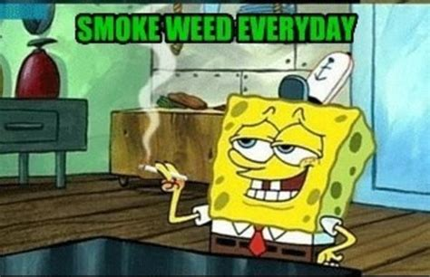 Spongebob Weed Memes - spawngggg smoke weed everyday know your meme