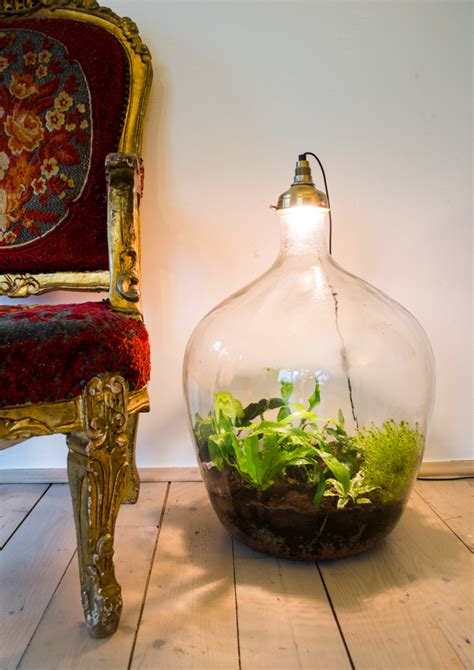 amazing plant lamps   meant    statement