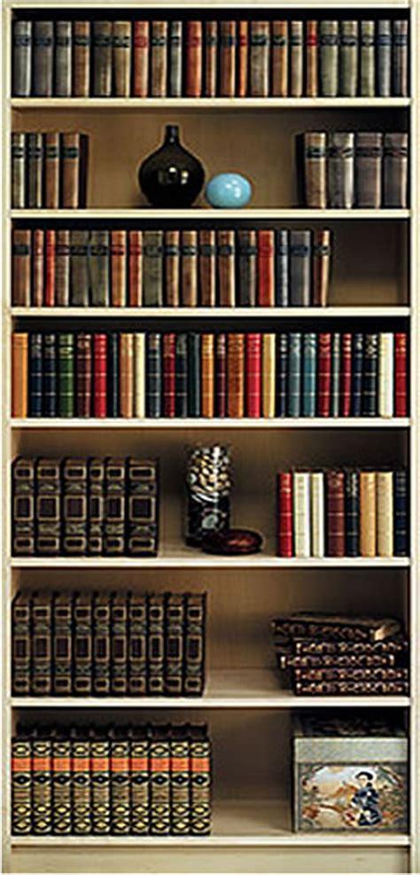bookshelf wall mural