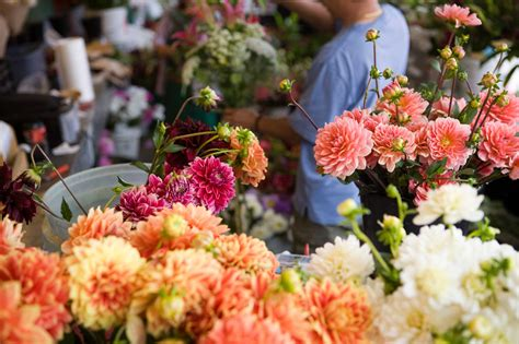 flower food without 13 things your florist won t tell you