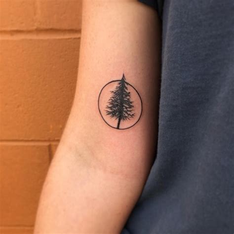 pine tree tattoo 30 simple and easy pine tree designs for everyone