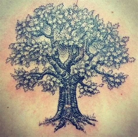 oak tattoo my new oak tree new design