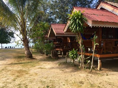 bungalow krabi and one of the dogs picture of pan bungalows