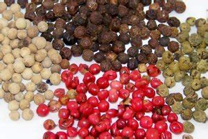 alimentazione indiana alimentazione le 5 spezie indiane migliori per la salute