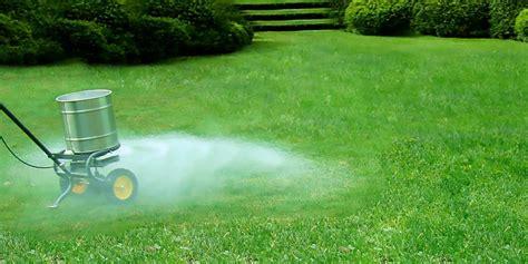 best lawn fertilizer which type lawn fertilizer is best liquid products or