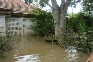 backyard flooding flooded backyard abc news australian broadcasting
