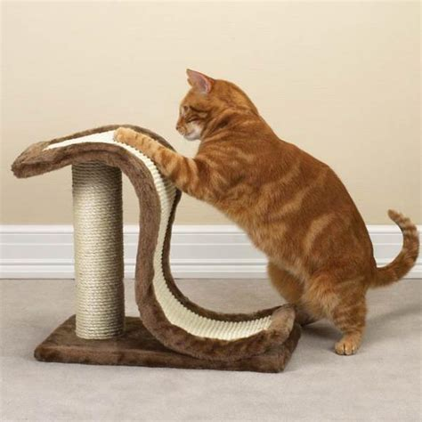 Cat Scratching by Cat Scratching Posts Cat Scratchers Cat Scratch Box