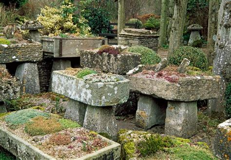 How To Make A Rock Garden How To Create A Rock Garden Mnn Nature Network