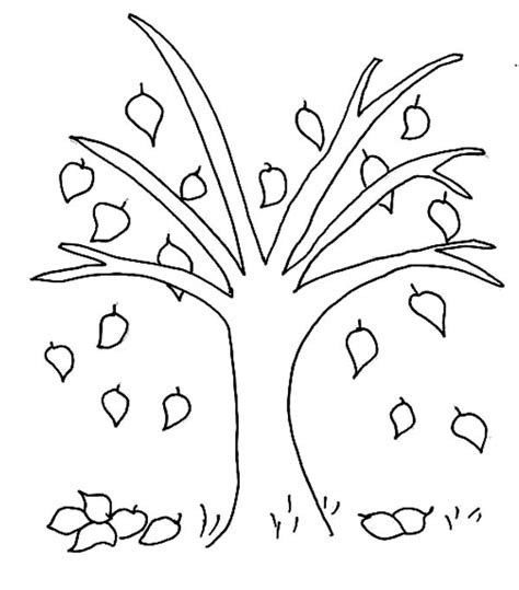 Coloring Pages For Autumn Pages Picture 22 U2013 Fall Tree Coloring Page