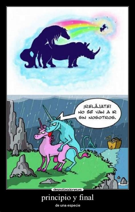 imagenes de animales unicornios im 225 genes y carteles de unicornios pag 51 desmotivaciones
