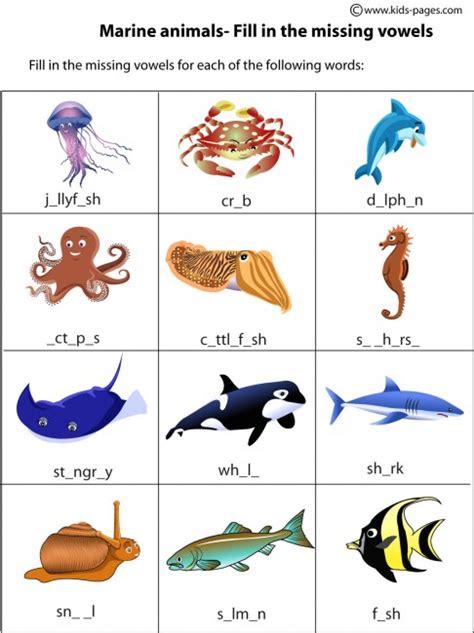 ocean animal flashcards kids pages marine animals preschool pinterest