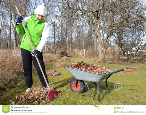 How To Clean Backyard by Early Garden Cleaning Stock Image Image 23691941