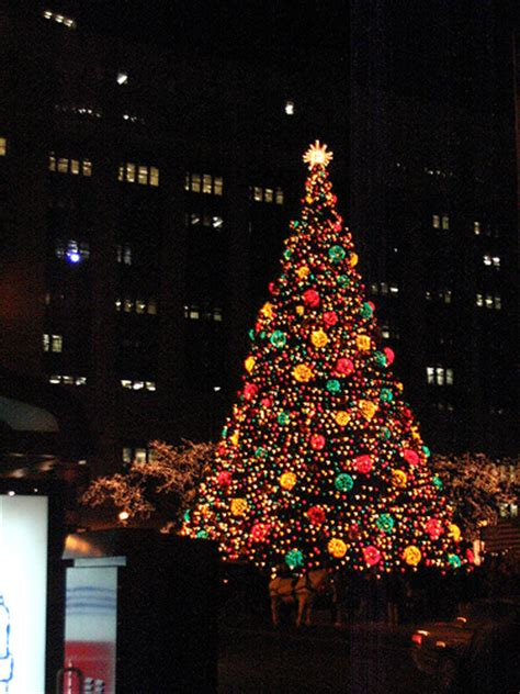 chicago christmas tree flickr photo sharing