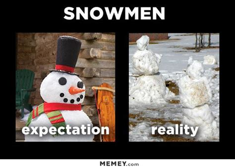 expectation vs reality memes funny expectation vs