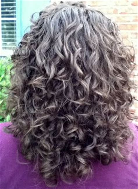 hairstyle for gray thin wavy hair best 25 curly gray hair ideas on pinterest why grey