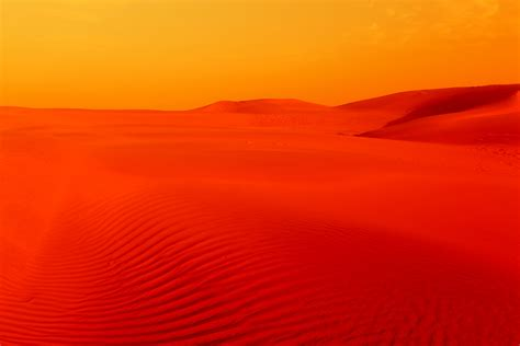 thar desert thar desert pinkybinks