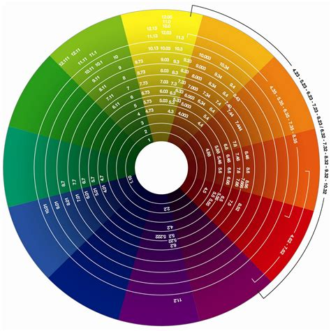 the wondrous evoluscope taxonomy colour wheel